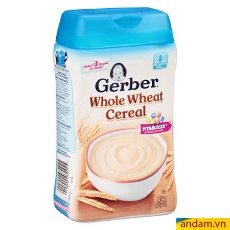 Bột ăn dặm Gerber vị lúa mì